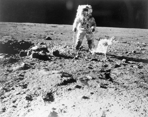 apollon secrecy moon photo