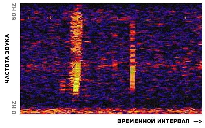 звук из глубин океана