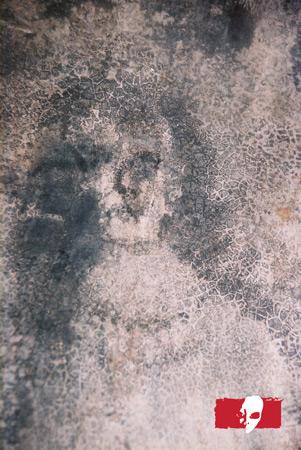 lica belmeza 1