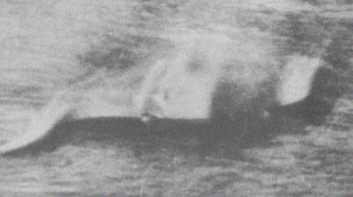Лохнесское чудовище. Первое фото. Автор шотландец Хью Грей