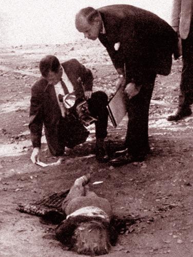 жертва убийцы Зодиака Черри Бейтс