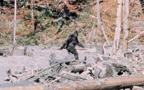 фото снежного человека фильм паттерсона