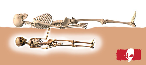 starchild skull skeleti