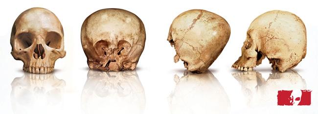 starchild skull sravnenie