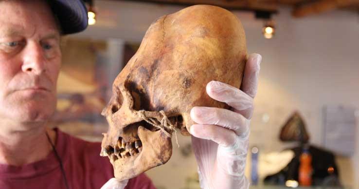 Удлинённые черепа
