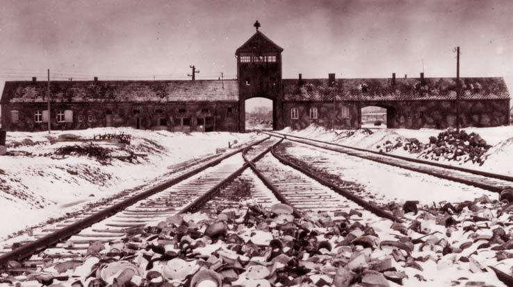 Концлагерь Освенцим – завод массового убийства людей