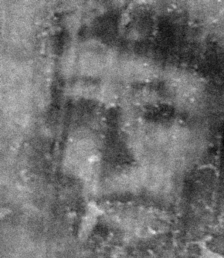 Лица Бельмеза