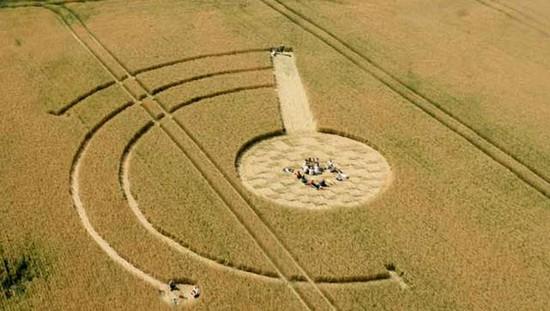 Люси Прингл и ее единомышленники изучают круги на полях