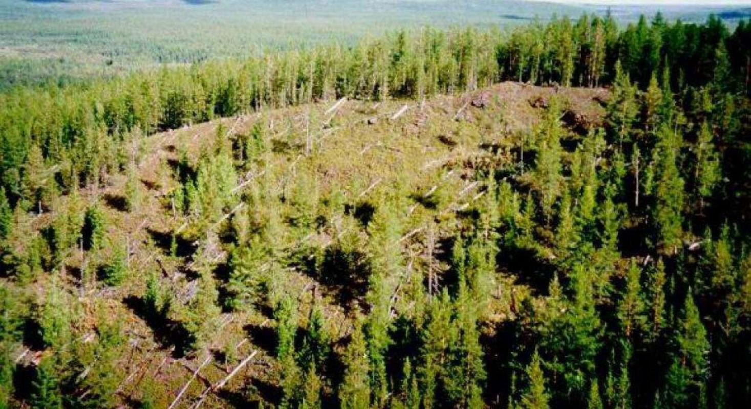 Предполагаемое место падения Тунгусского метеорита