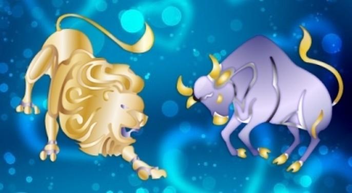 Совместимость Лев и Телец